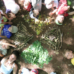 Stage nature Bambous (5-6 ans)